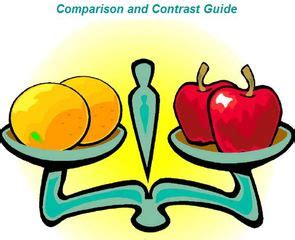 Comparison and contrast essay about two friends